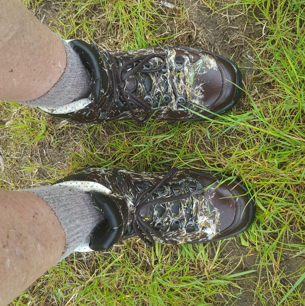 natte schoenen