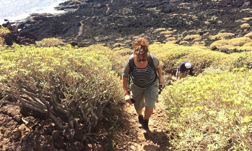 Wandelroute Tenerife: Malpais de Güimar, tussen lava en de zee