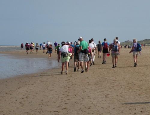 De Wandel4daagse Alkmaar, wat is die strand- en duinenroute leuk!