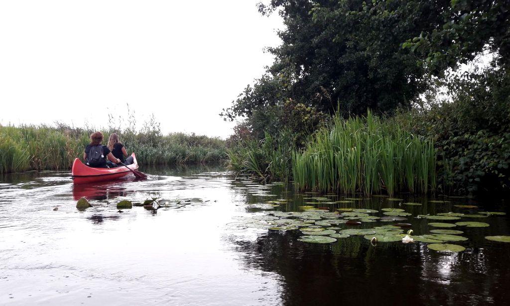 Met de kano in het Butenfjild, Friese Wouden
