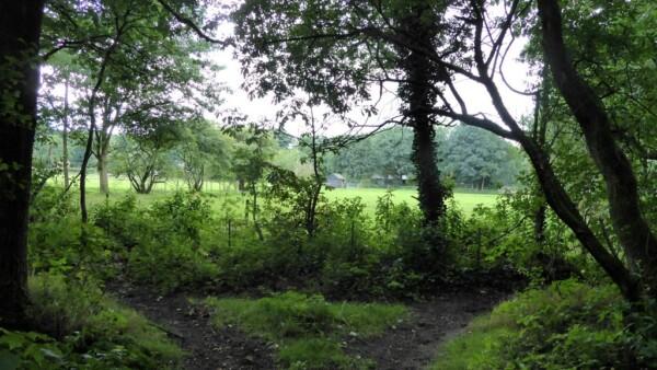 wandelen rond Hoenderloo