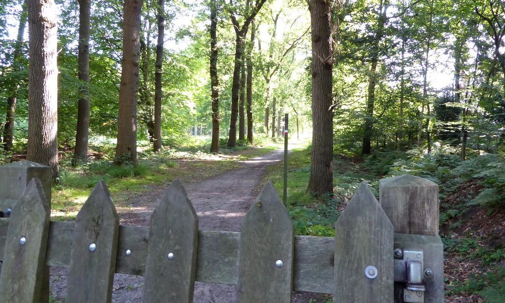 Beetsterzwaag, ook het Groot-Frieslandpad loopt hier