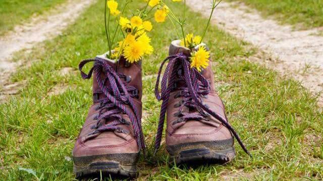 Oude wandelschoenen met bloemen
