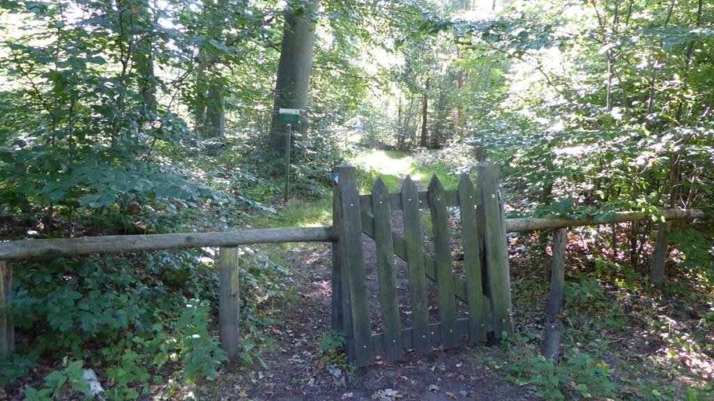 Landgoed Lauswolt, Lanterfanten in Beetsterzwaag
