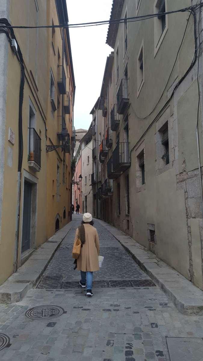 De middeleeuwse stad Girona