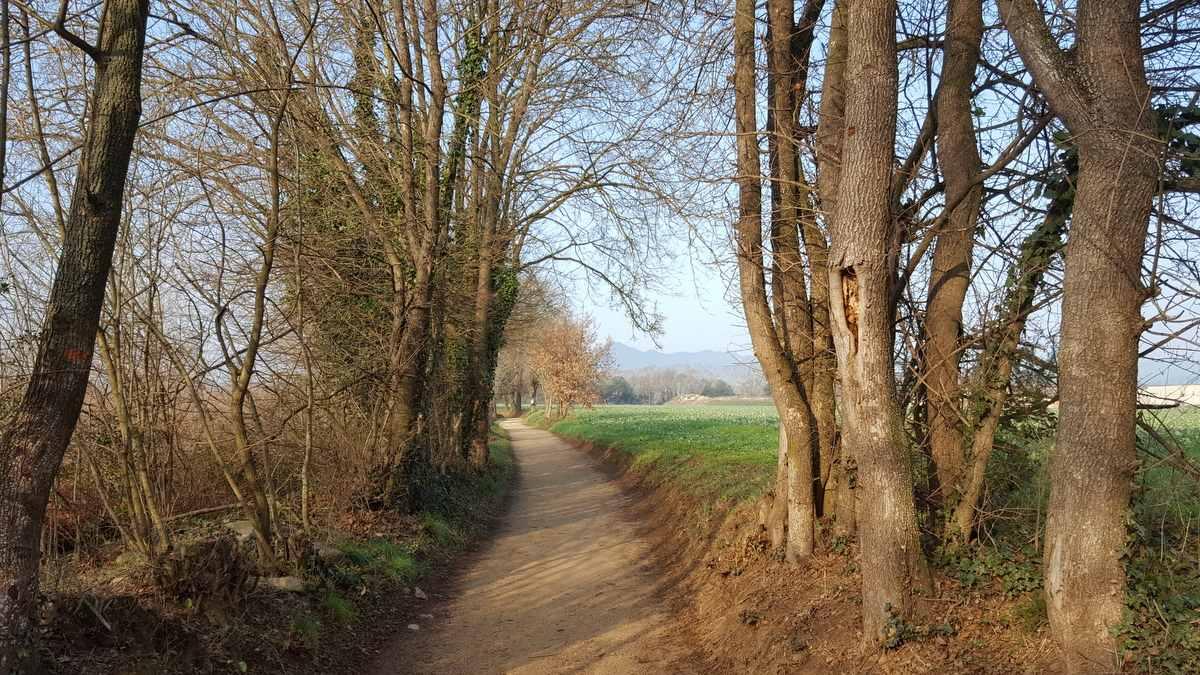 route wandel 4 daagse Girona