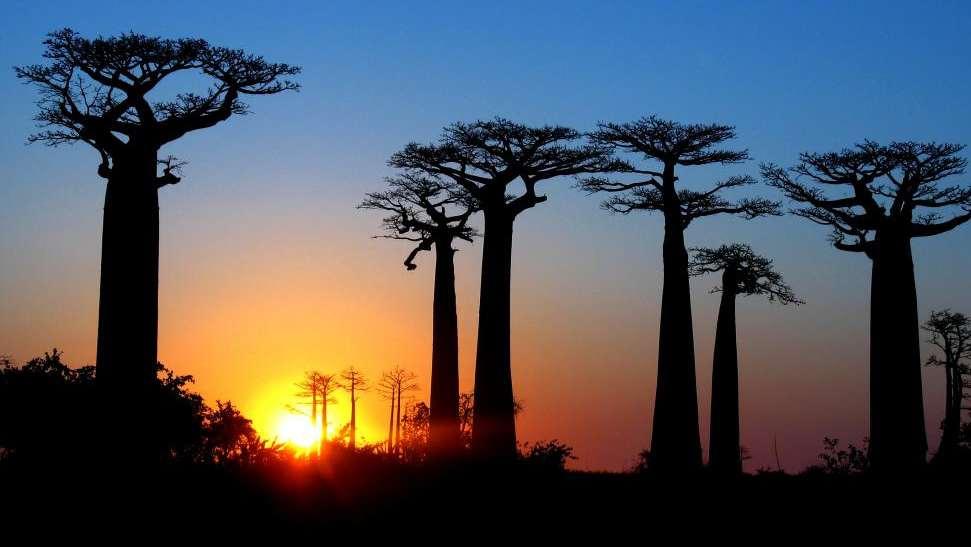 Madagaskar bucketlist