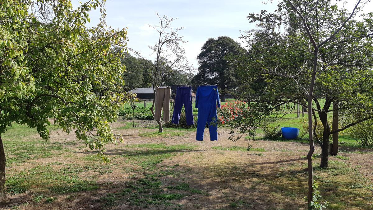 De mooiste wandeling van Nederland - Twentse wallen Markelo