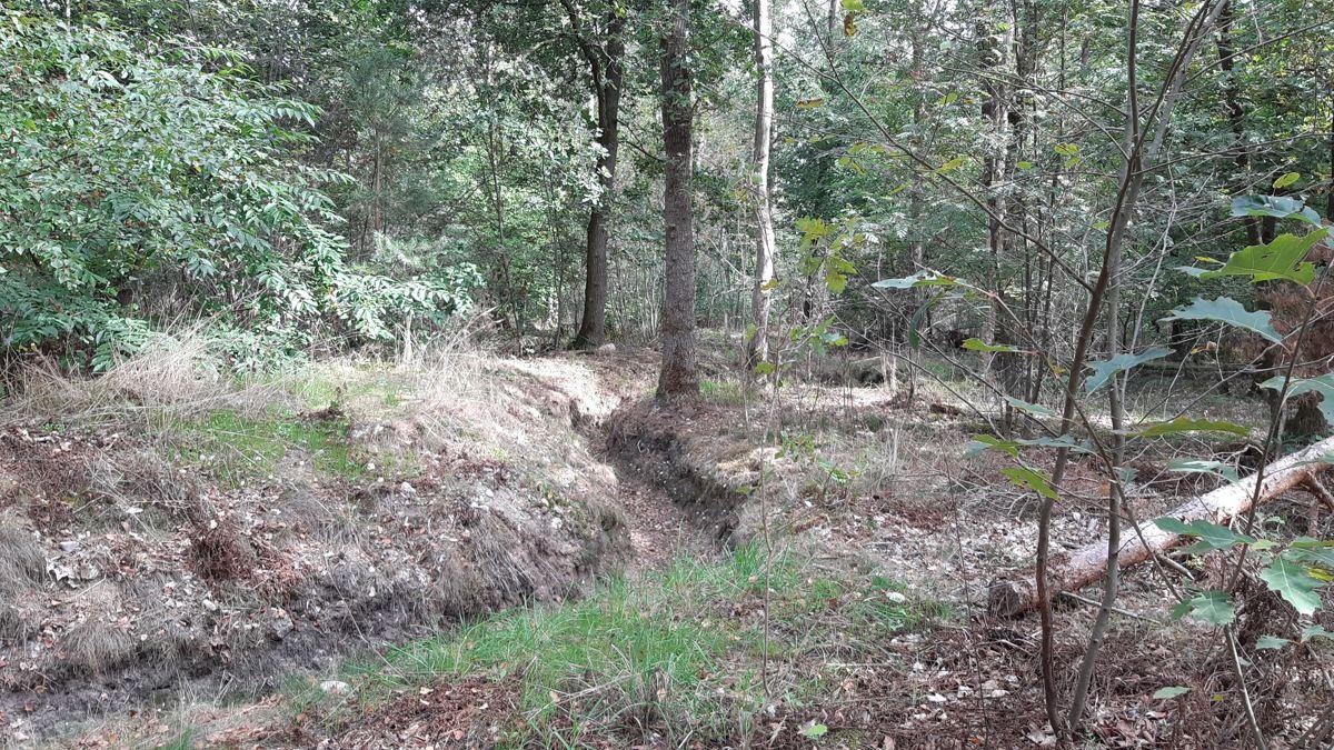 Loopgraven Kattenberg Overijssel