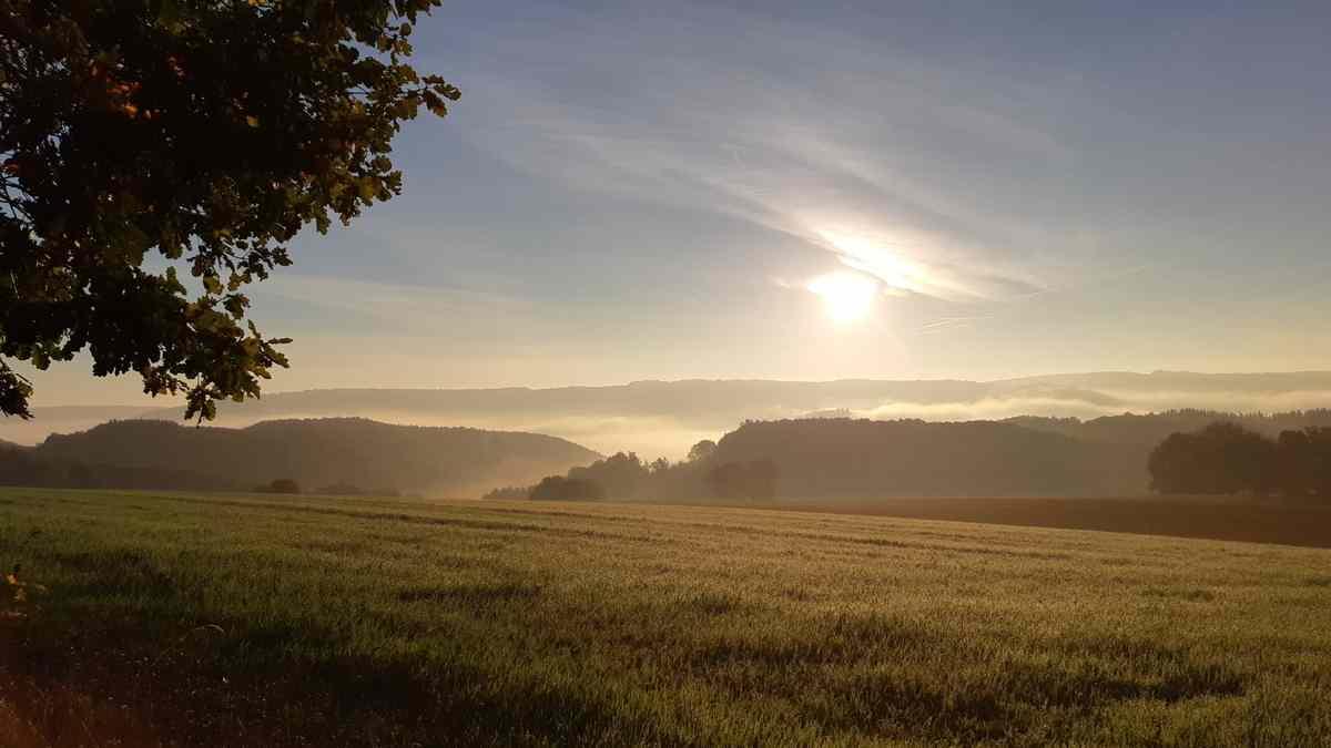 Naturlagerplatz 'Land in Sicht' - uitzicht