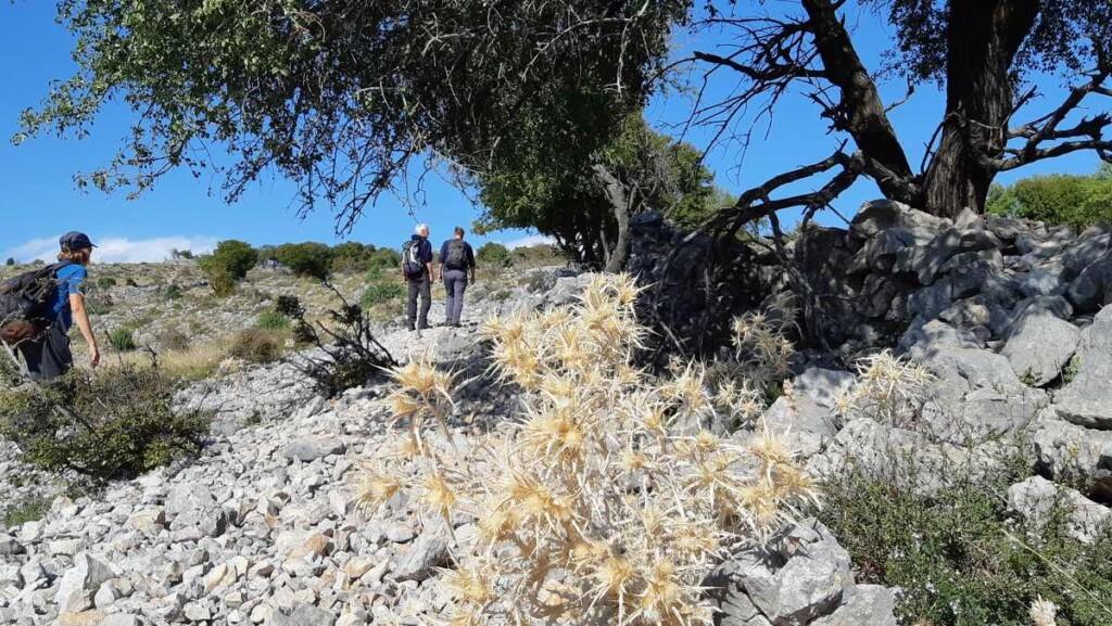 Wandelen boven de rivier Krupa op stenige bodem