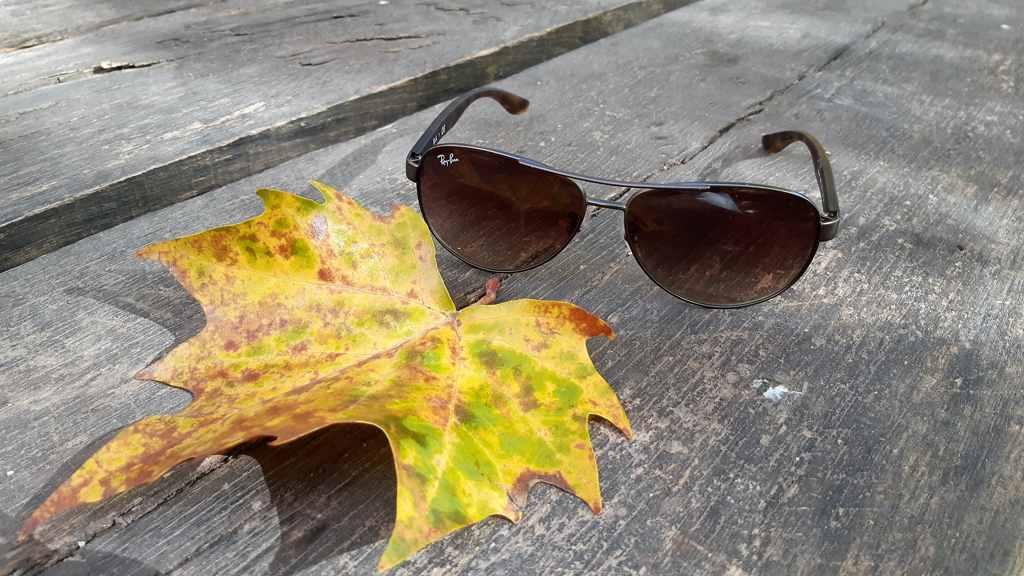 Zonnebril met herfstblad
