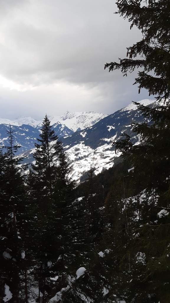 Silbertal - panormaloipe kristberg - Montafon
