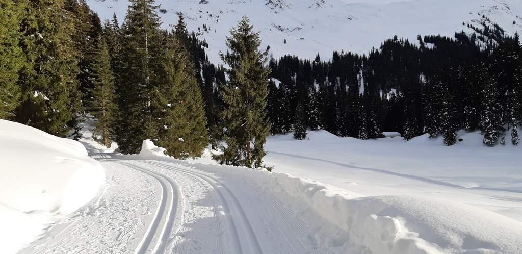 Leren langlaufen op de panoramaloipe Kristberg