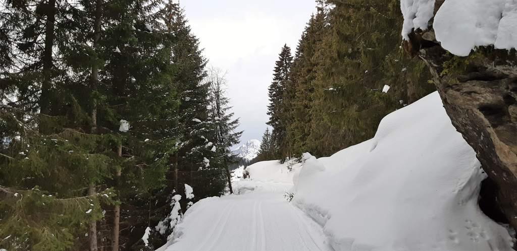 panoramaloipe Kristberg