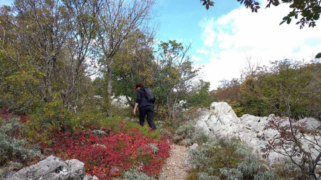 Wandelen in Nationaal Park Paklenica - Bojinac