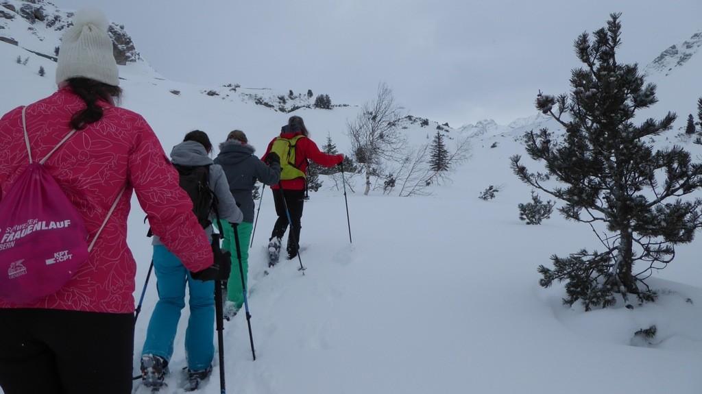 Sneeuwschoenwandeling Silvrettasee