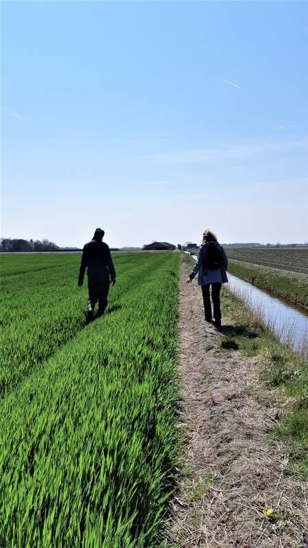 Noord-Hollandpad etappe 4: Wandelen van Julianadorp naar Wieringenwaard