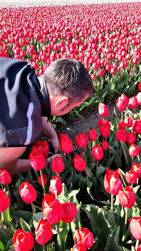 Remco in rood tulpenveld