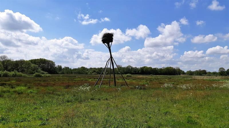 Wandelen in het Reestdal: wandelroute Trage Tocht Oud Avereest
