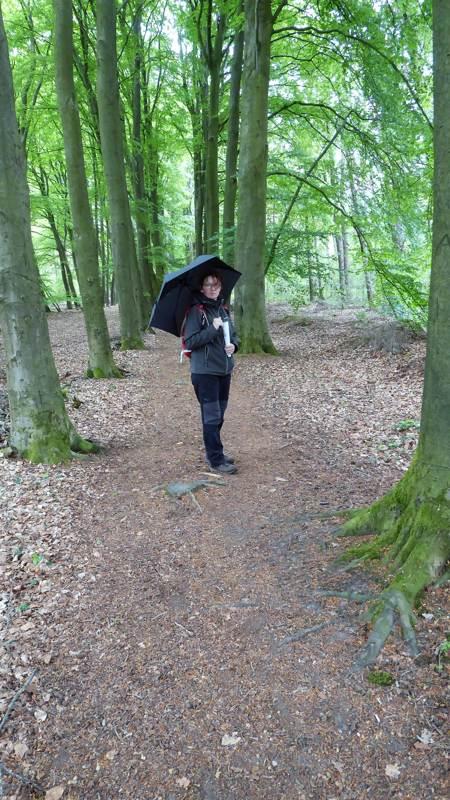 Wandelen met een paraplu