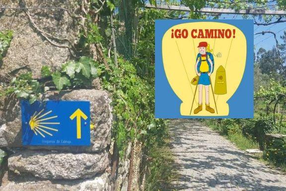 go camino - georganiseerd camino lopen met bagagevervoer