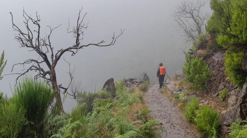 De hoogste bergen van Madeira beklimmen